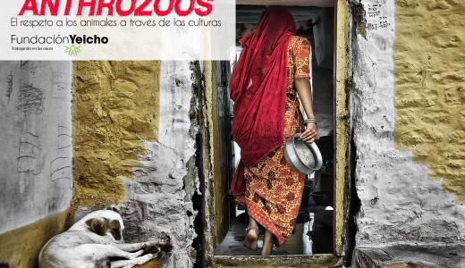 Exposición fotográfica Anthrozoos