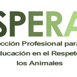 I Jornadas de Educación en el Respeto a los Animales