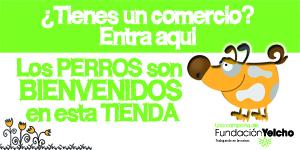 Campaña de comercios amigos de los perros. Fundación Yelcho